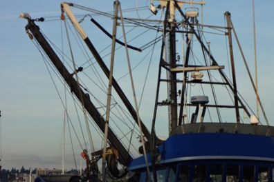 Fishing Vessel, MTNW, LCI-80, LCI, Trawling, Line Counter, Payout, Sheave